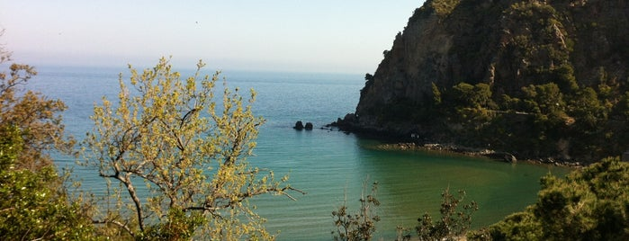 Spiaggia di San Montano is one of South Italy.