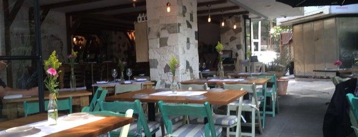 Mythos is one of Mis Mejores Restaurantes 🍽 Ciudad de Mexico.