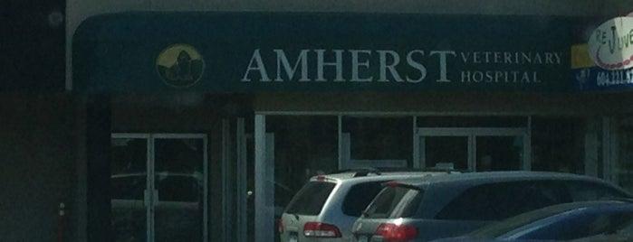 Amherst Veterinary Hospital is one of Veterinary Clinics Across Western Canada.