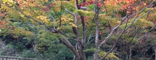 うかい竹亭 is one of 東京散策♪.