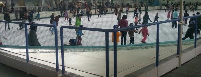 イヨテツスポーツセンター is one of スケートリンク.