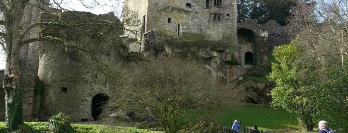 The Blarney Stone is one of Abroad to do.