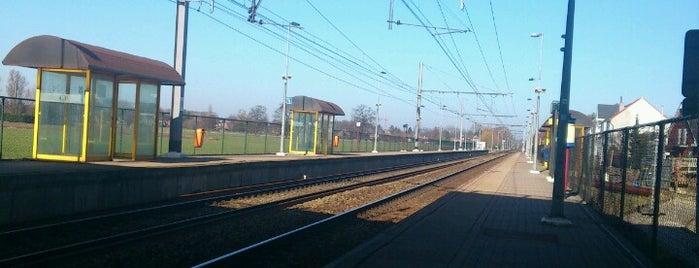 Station Sint-Mariaburg is one of Bijna alle treinstations in Vlaanderen.