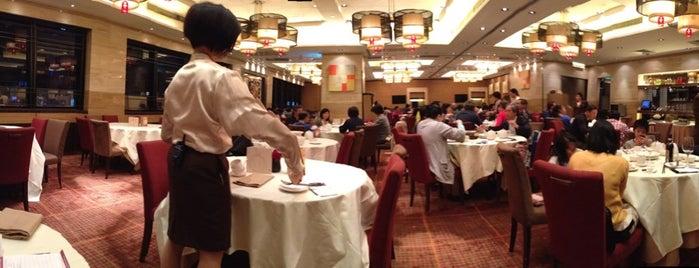 Hong Kong Opt Restaurants