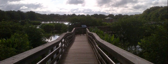 Wakodahatchee Wetlands is one of Delray.