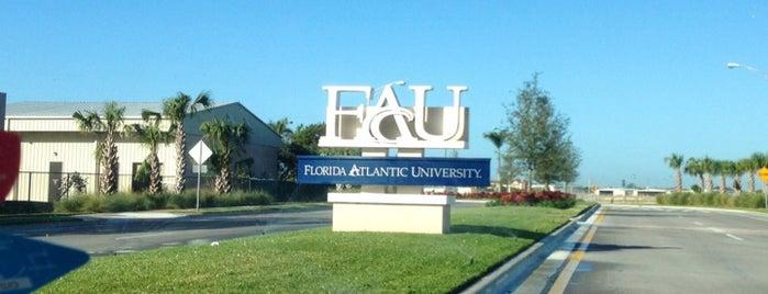 Florida Atlantic University is one of NCAA Division I FBS Football Schools.