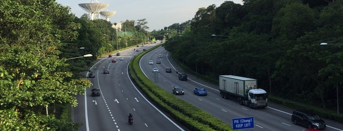 Rifle Range Flyover is one of Non Standard Roads in Singapore.