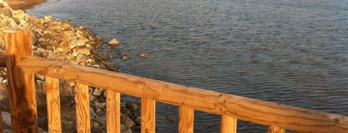 Playa de la Isla is one of Playas.
