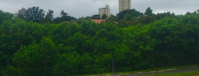 Monte Alto is one of Casas.