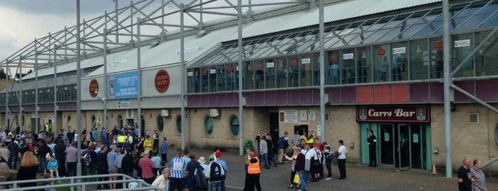 Sixfields Stadium is one of Venues....