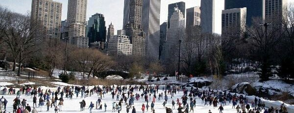 Wollman Rink is one of NY.