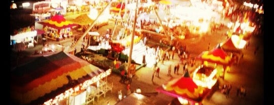 North Georgia State Fair is one of The Chad.