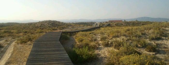 Praia da Culatra is one of Guía del Algarve.