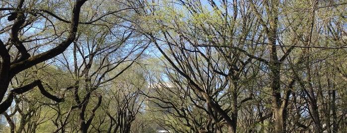 Literary Walk is one of New York Favorites.