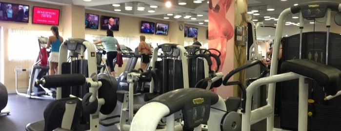 Alfa Fitness is one of Спортивные клубы.