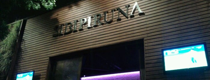 Sibipiruna Bar is one of Places.