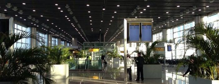 Terminal 3 (TPS3) is one of HAVALİMANLARI.