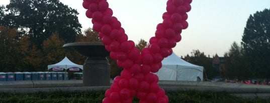 Making Strides Against Breast Cancer Walk is one of Been there / &0r Go there.