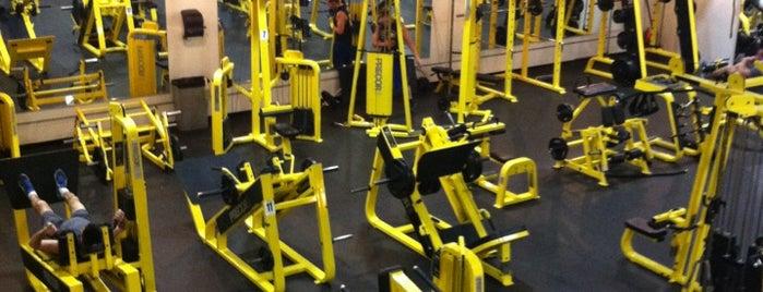 Sweat Fitness is one of Phila Lemon Run.