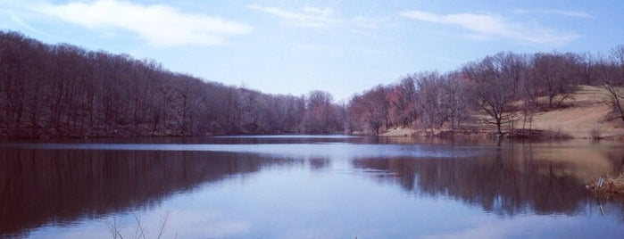 Rockefeller State Park Preserve is one of Adventures.