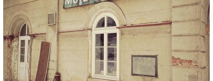 Železniční stanice Moldava v Krušných horách is one of Železniční stanice ČR: M (7/14).