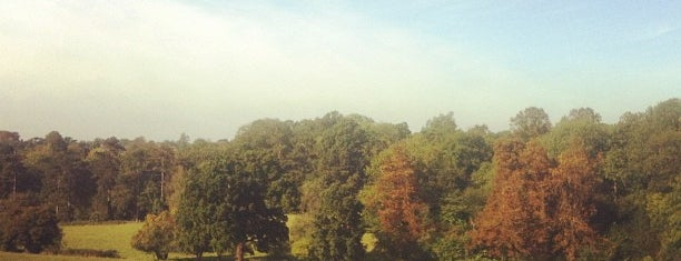 Petts Wood is one of London // Outdoors.