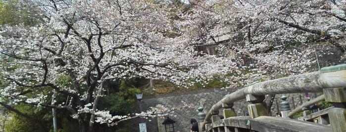 Otonashi Shinsui Park is one of 日本の都市公園100選.