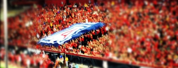 Arizona Stadium is one of Experience Teams & Venues.