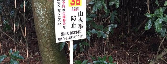 阿部倉山 山頂 is one of 三浦半島の山々.