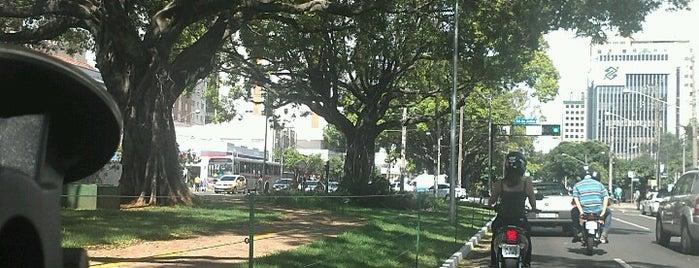 Bairros de Campo Grande