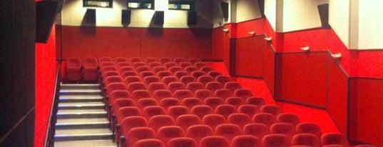 Кинотеатры Петербурга