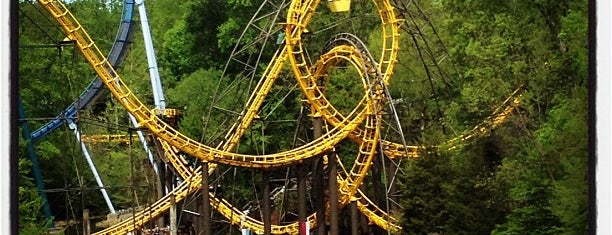 Busch Gardens Williamsburg is one of Travel spots.