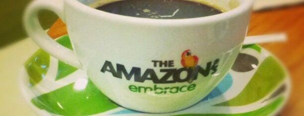 The Amazon's Embrace is one of ช่างกุญแจประเวศ 087 488 4333.