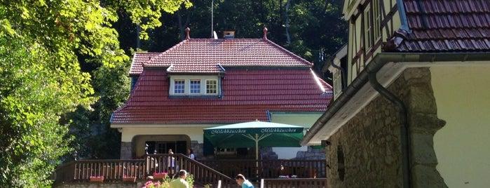 Gasthaus Milchhäuschen is one of Köln.