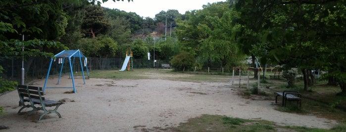 甲南公園 is one of 公園.