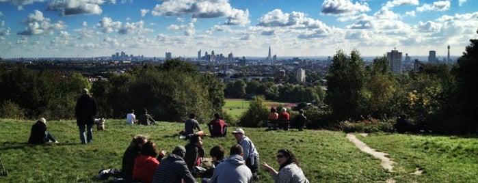 Parliament Hill is one of Summer in London/été à Londres.