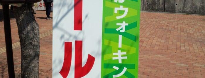 Nakamizuno Station is one of 愛知環状鉄道.