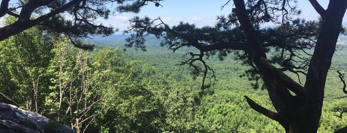 Bears Den is one of A local's guide: 48 hours in Berryville, VA.