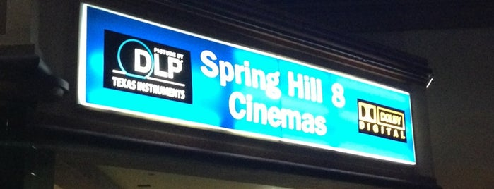 Spring Hill 8 - Sapphire Motion Pictures is one of Creative Innovations Cause Related Advertising.
