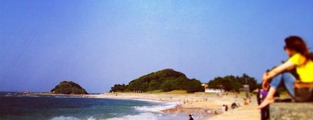 Shikanoshima Island is one of FUKUOKA.