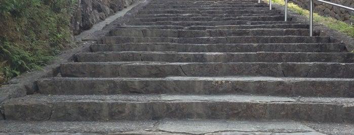 稲荷山 護国院 龍光寺 (第41番札所) is one of 四国八十八ヶ所霊場 88 temples in Shikoku.
