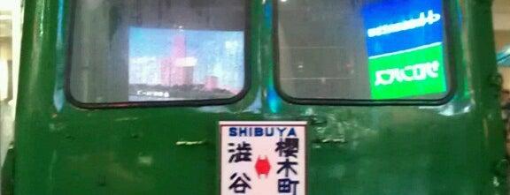 Aogaeru is one of Tokyo-Sibya.
