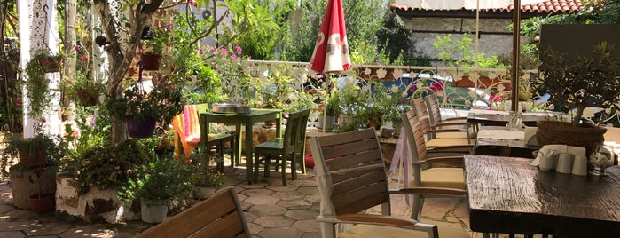 Lemon Tree Restaurant is one of Alanya.