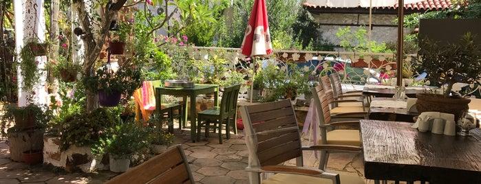 Lemon Tree Restaurant is one of Antalya mayıs.