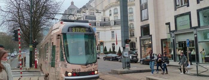 Stéphanie / Stefania (MIVB / STIB) is one of MIVB/STIB.