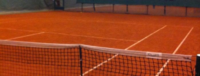 Gloria tennis is one of Н.