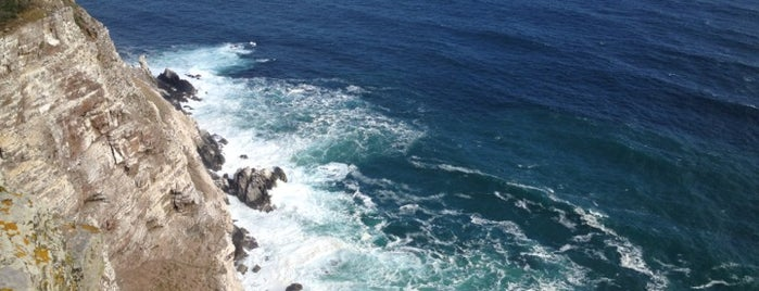 Cape of Good Hope is one of Travel Guide to Cape Town.