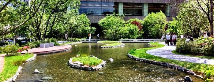 グランフロント大阪の池 is one of 大阪.