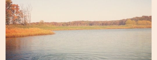 Eagle Creek State Park is one of Illinois: State and National Parks.