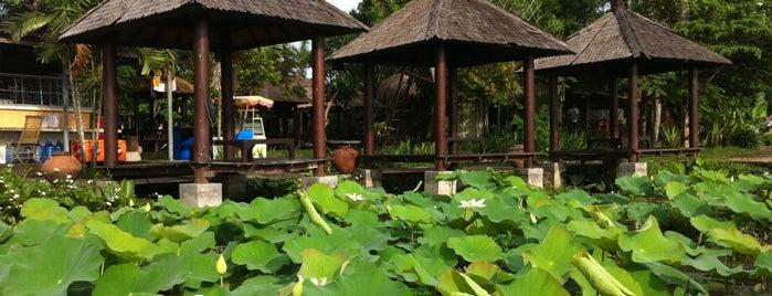 Desa Budaya Kertalangu is one of Bali for The World #4sqCities.